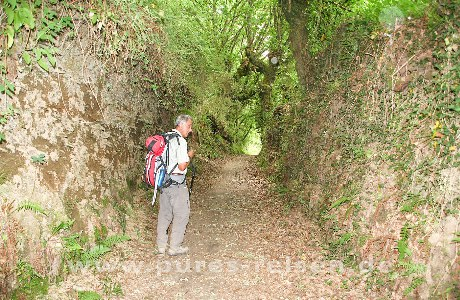 Hohlweg Camino