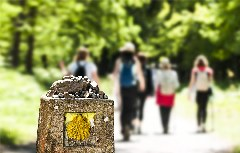 Pilgergruppe bei Jakobsweg Markierungsstein
