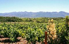 Blick auf Montes de León