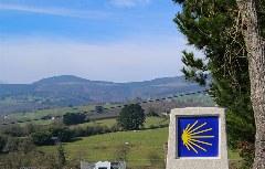 Wegstein im grünen Galicien