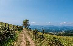 Camino nach Pola de Allande