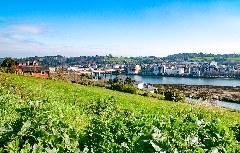 Aussicht auf Navia
