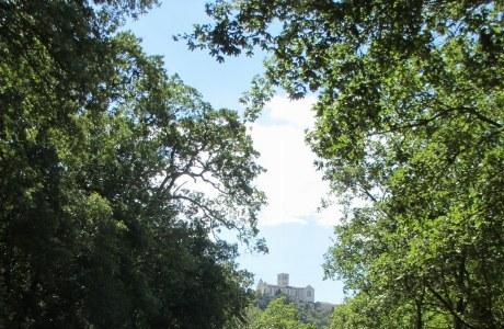 Franziskusweg kurz vor Assisi