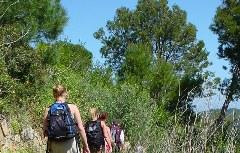 Wegesrand Costa Brava Wanderung